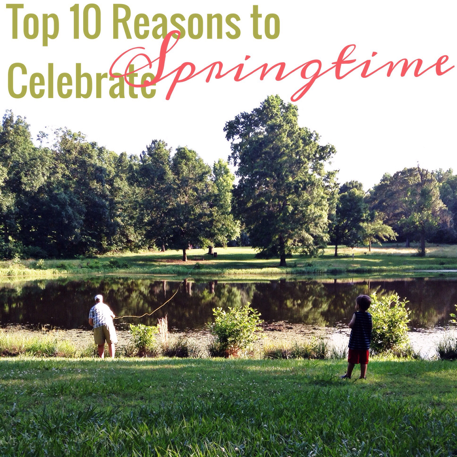 Top 10 Reasons to Celebrate Springtime