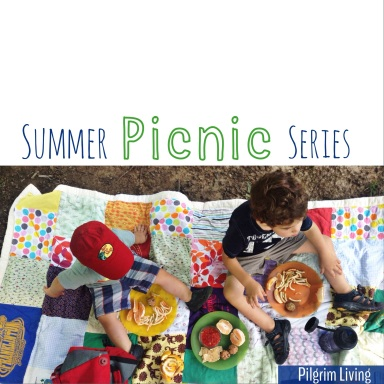 summer picnic series